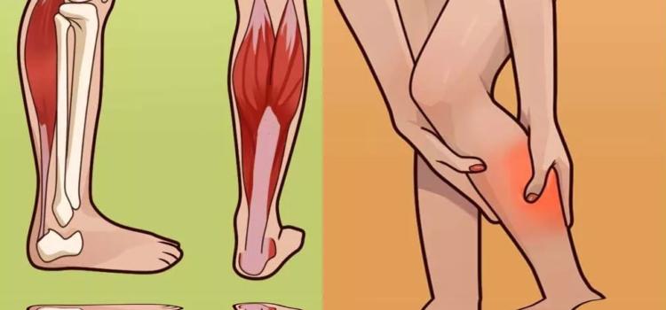 Ногу свело? Что делать при судорогах