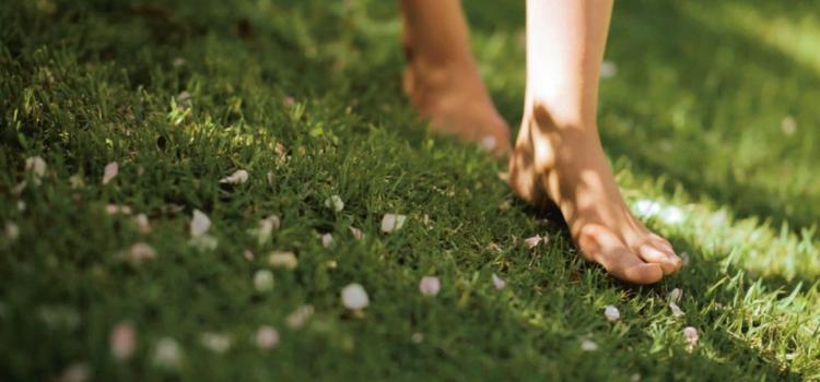 Ходить босиком – польза или вред? Две точки зрения
