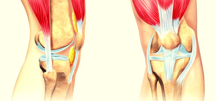 Повреждение подколенного сухожилия – первая помощь